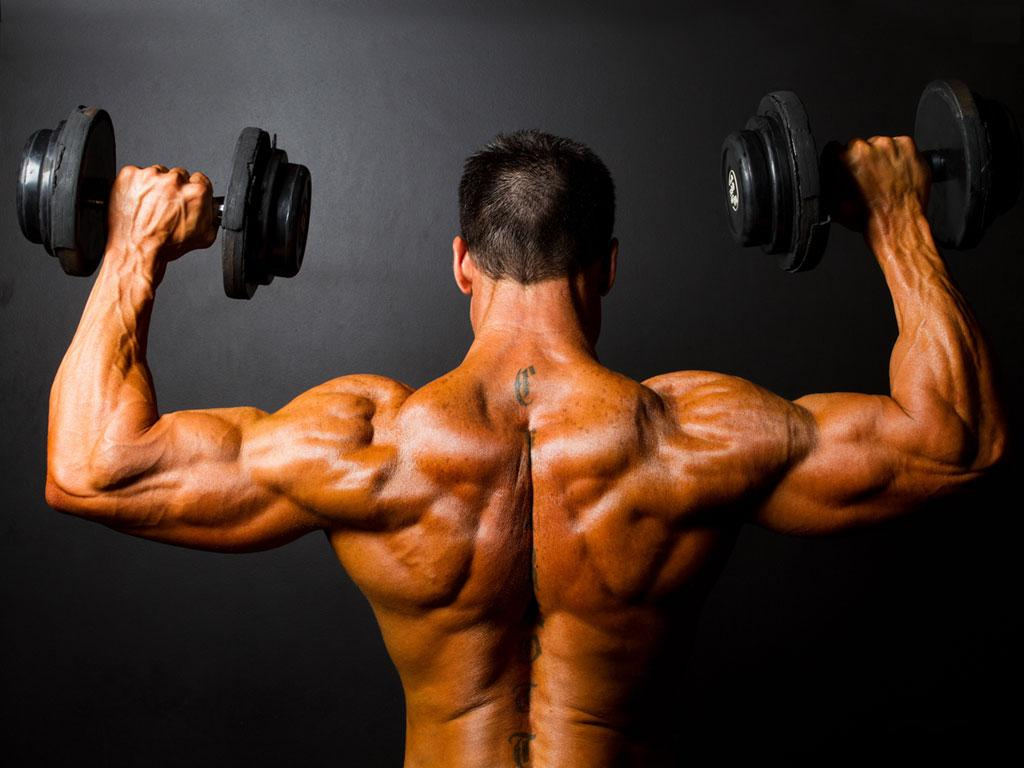 Image result for Legal Bulking Steroids
